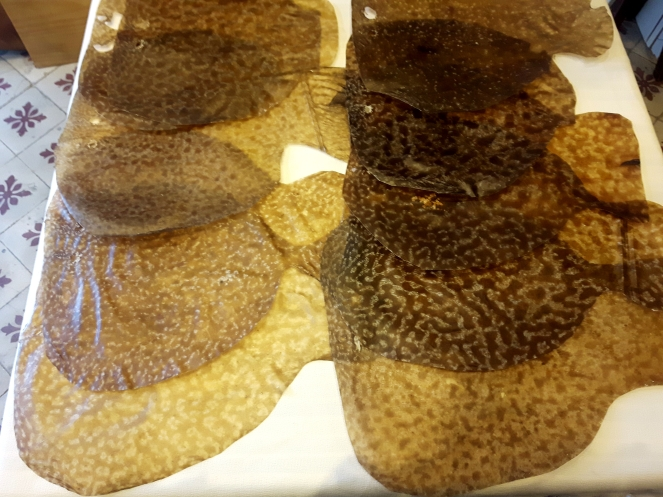 Peaux naturelles / Poisson (fish skin) : raie ( grande taille )